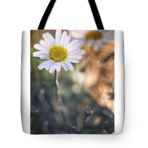 Evening Daisy Tote Bag