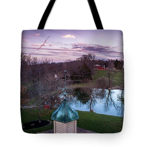 Evening Dove Tote Bag