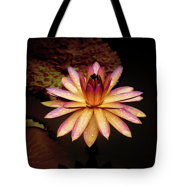 Tote Bag featuring the photograph Evening Glow Water Lily by Julie Palencia