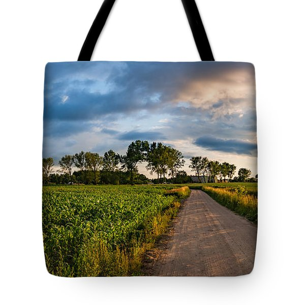 Tote Bag featuring the photograph Evening In A Cornfield by Dmytro Korol