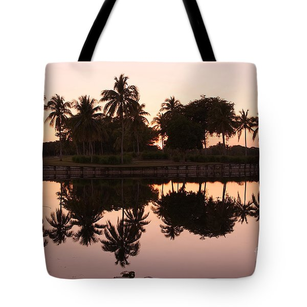 Evening In Pink Tote Bag