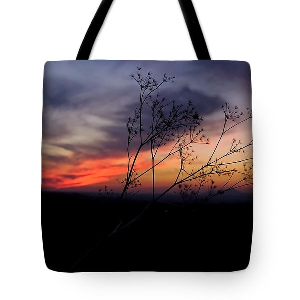 Evening Light Over Meadow Tote Bag