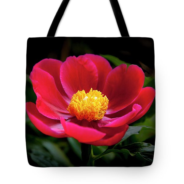 Tote Bag featuring the photograph Evening Peony by Charles Harden