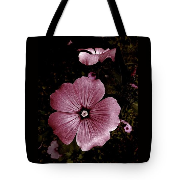 Evening Rose Mallow Tote Bag by Danielle R T Haney