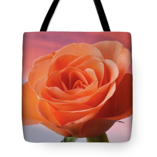 Tote Bag featuring the photograph Evening Rose by Terence Davis
