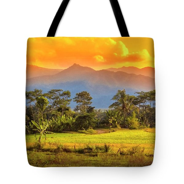 Tote Bag featuring the photograph Evening Scene by Charuhas Images