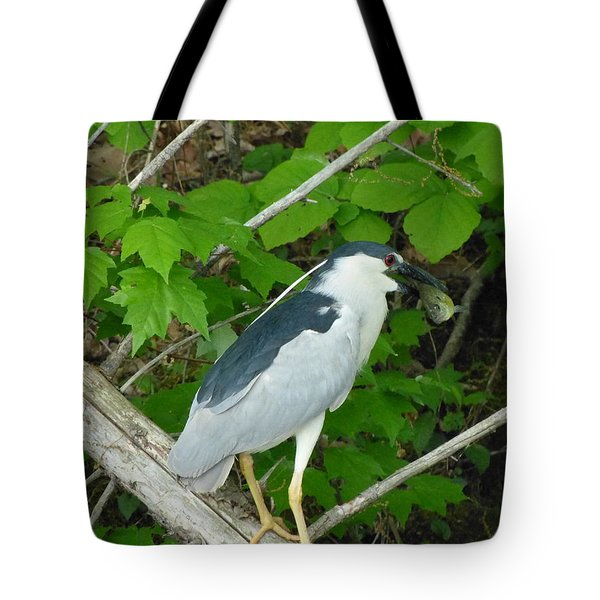 Evening Snack For A Night Heron Tote Bag by Donald C Morgan