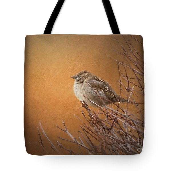 Evening Sparrow Song Tote Bag