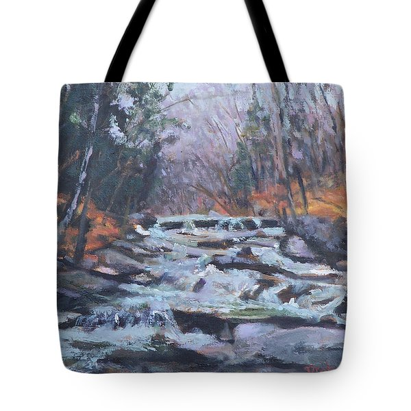 Evening Spillway Tote Bag by Alicia Drakiotes
