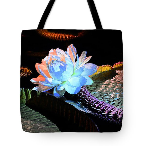 Evening Splendor Tote Bag by Cindy Manero