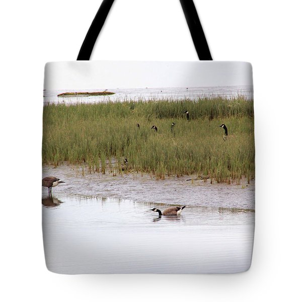 Evening Stollers Tote Bag