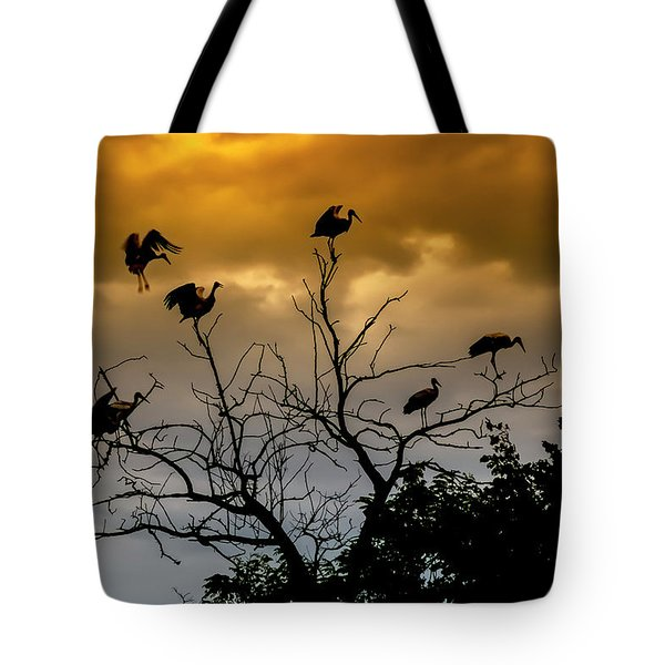 Tote Bag featuring the photograph Evening Storks by Cliff Norton