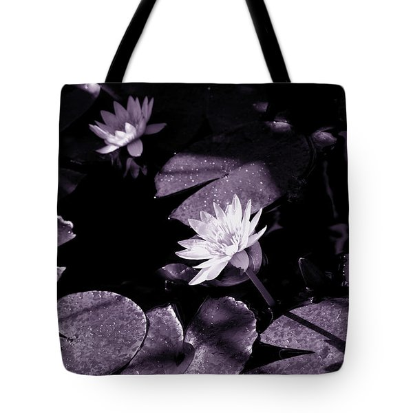 Evening Sun Light Tote Bag by Susanne Van Hulst