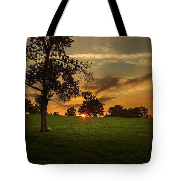 Tote Bag featuring the photograph Evening Sun Over Brockwell Park by Lenny Carter