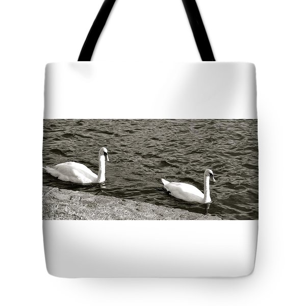 Tote Bag featuring the photograph Evening Swim by Corinne Rhode