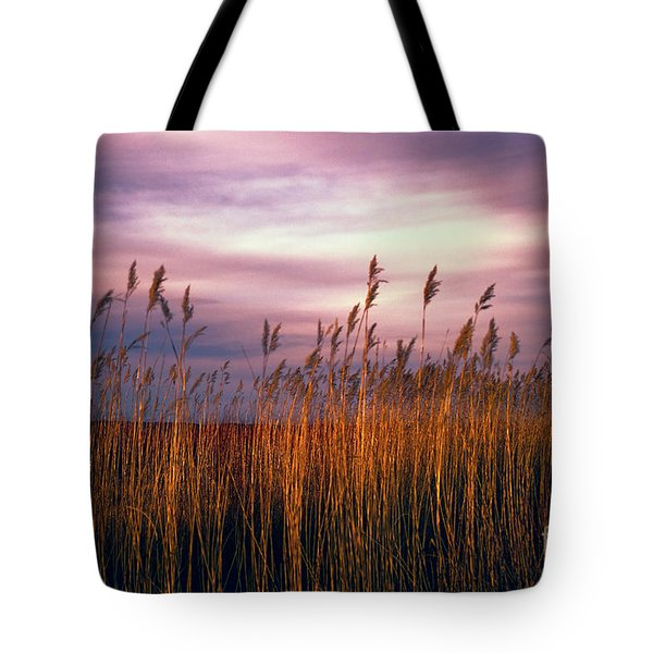 Evening's Candles Tote Bag