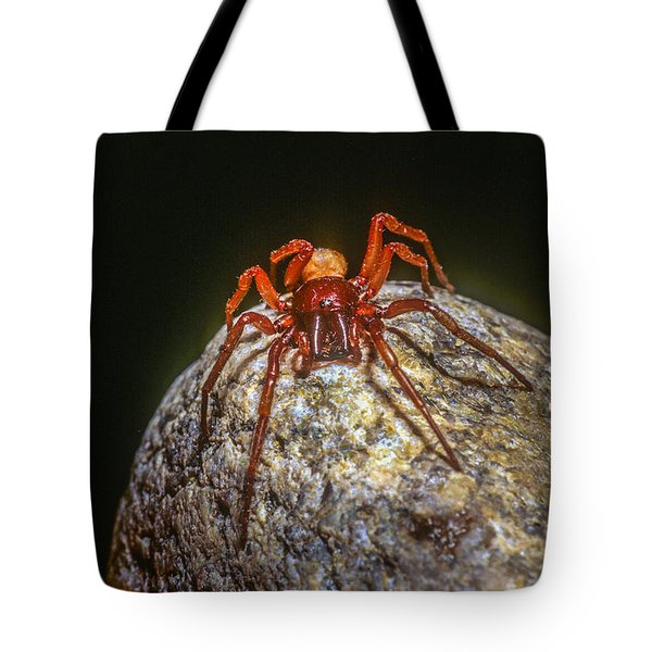 Somebody You Shouldn't Mess With Tote Bag