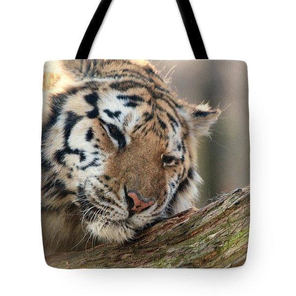 Ever So Gently Tote Bag by Karol Livote
