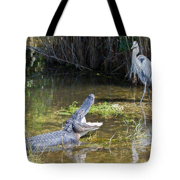 Everglades 431 Tote Bag