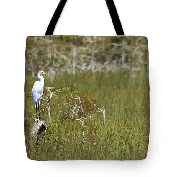Everglades 451 Tote Bag