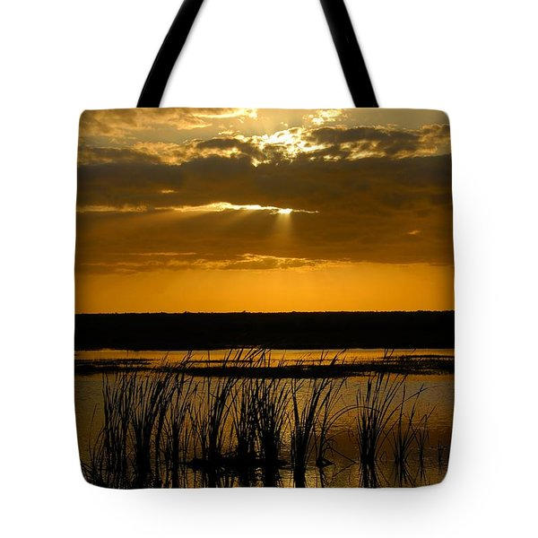 Everglades Evening Tote Bag by David Lee Thompson