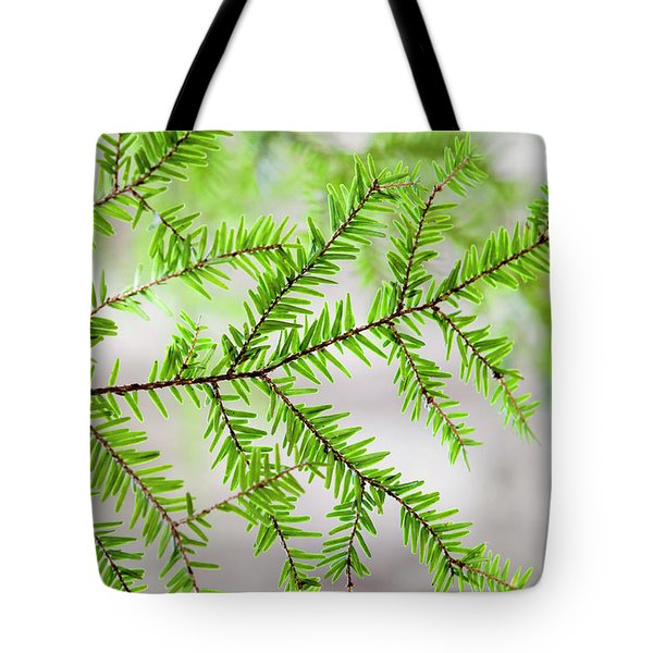 Tote Bag featuring the photograph Evergreen Abstract by Christina Rollo