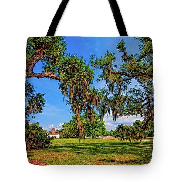 Evergreen Plantation Tote Bag by Steve Harrington