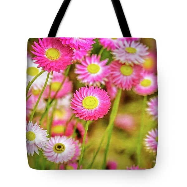 Tote Bag featuring the photograph Everlasting Daisies, Kings Park by Dave Catley