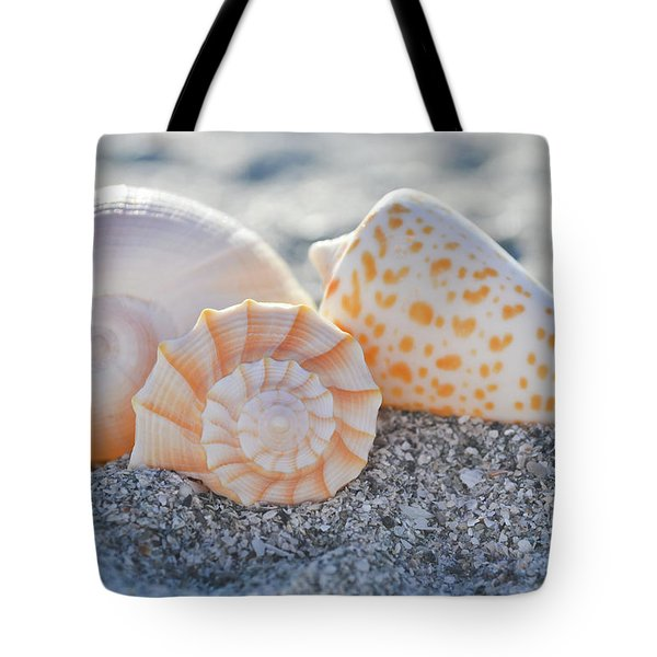 Tote Bag featuring the photograph Every Shell Has A Story by Melanie Moraga