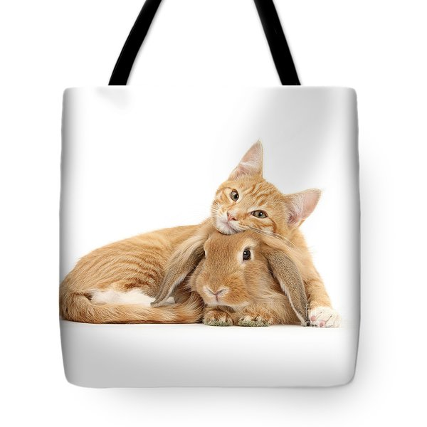 Everybody Needs A Bunny For A Pillow Tote Bag