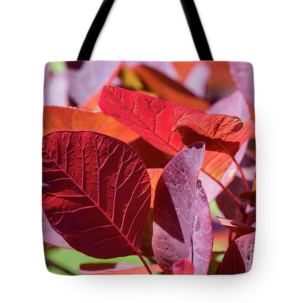 Tote Bag featuring the photograph Everything Is Extraordinary by Linda Lees