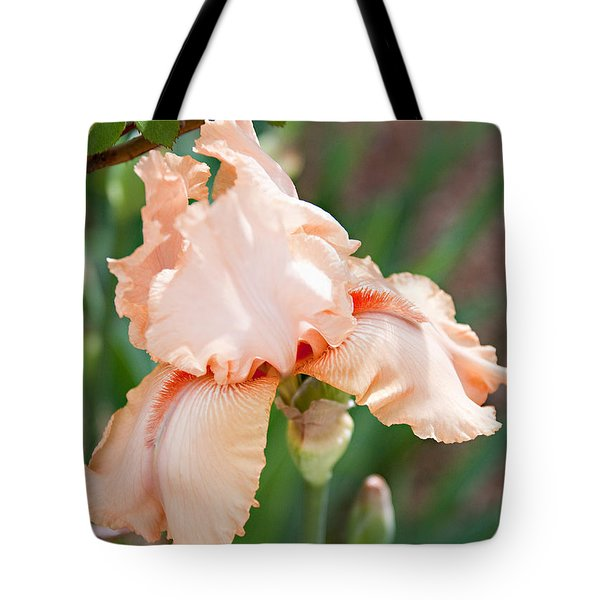 Tote Bag featuring the photograph Everything Is Peachy by Sherry Hallemeier