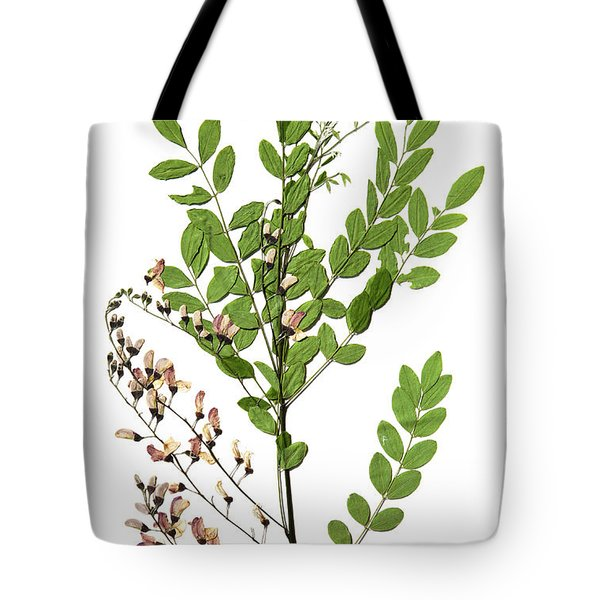 Eve's Necklace Tote Bag