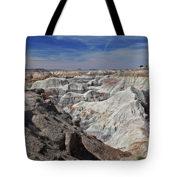 Evident Erosion Tote Bag by Gary Kaylor