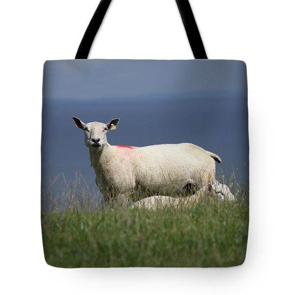 Ewe Guarding Lamb Tote Bag