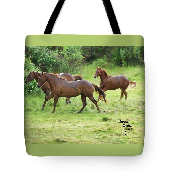 Excitement Before The Storm Tote Bag