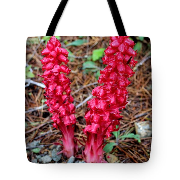 Tote Bag featuring the photograph Exotic Flower Or  by Marie Neder