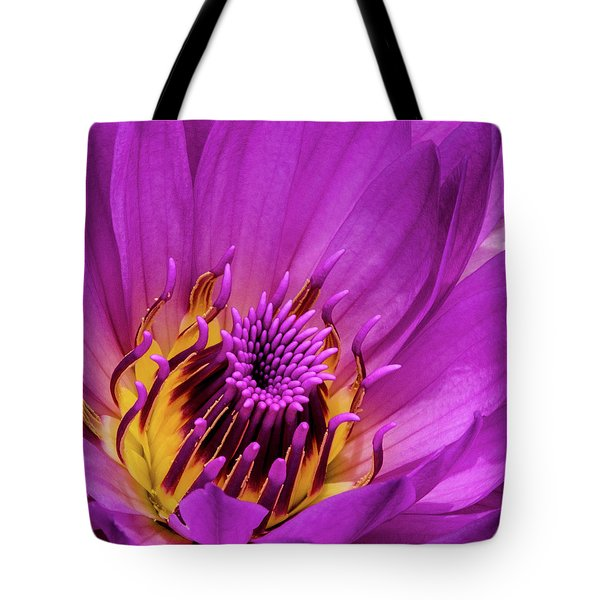 Tote Bag featuring the photograph Exotic Hot Pink Water Lily Macro by Julie Palencia