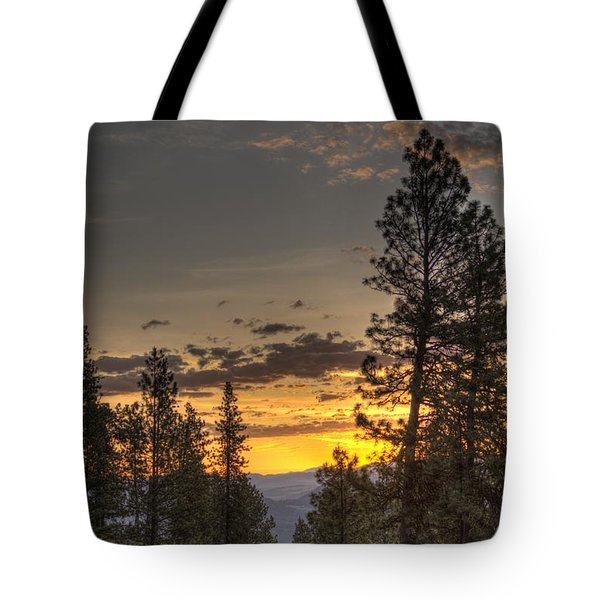 Explore1 Tote Bag by Loni Collins