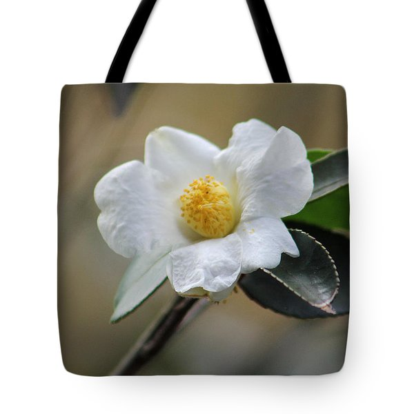 Tote Bag featuring the photograph Exposed by Deborah  Crew-Johnson