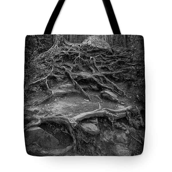 Tote Bag featuring the photograph Exposed Roots by Alan Raasch