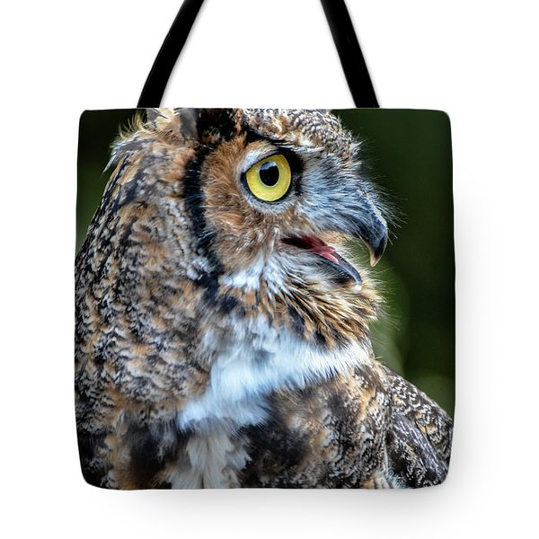 Expressive Tote Bag by Amy Porter