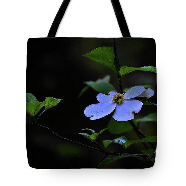 Tote Bag featuring the photograph Exquisite Light by Skip Willits