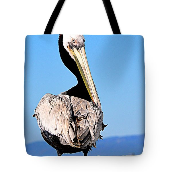 Tote Bag featuring the photograph Eye Contact by AJ Schibig