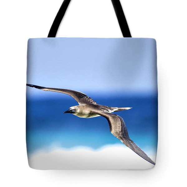 Eye Contact Tote Bag by Sean Davey