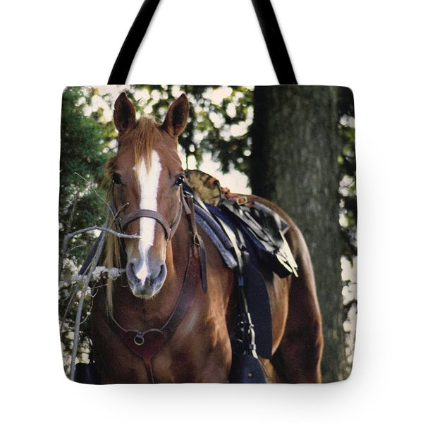 Eye Contact Tote Bag by Stacy C Bottoms