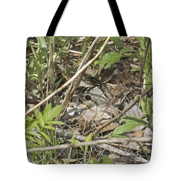 Eye-contact With The Nesting American Woodcock Tote Bag