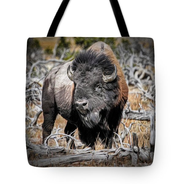 Eye Of The Buffalo Tote Bag