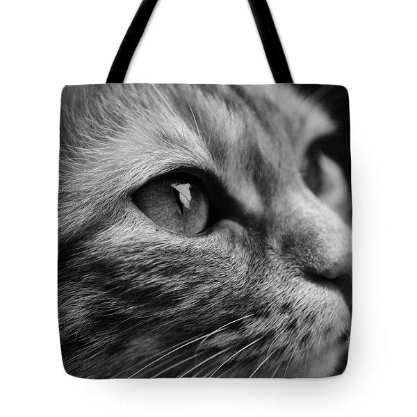 Eye Of The Cat Tote Bag