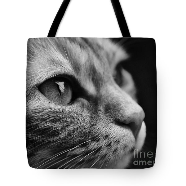Eye Of The Cat Tote Bag